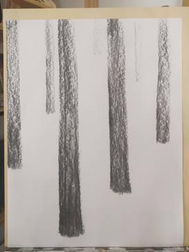 Rythmes verticaux : les troncs d'arbre