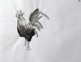 Encre de Chine / oiseaux