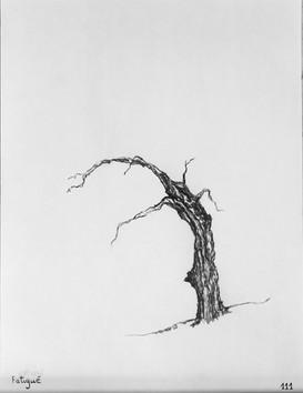 Etude de l'arbre