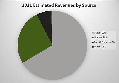 2021 Revenue Chart.JPG