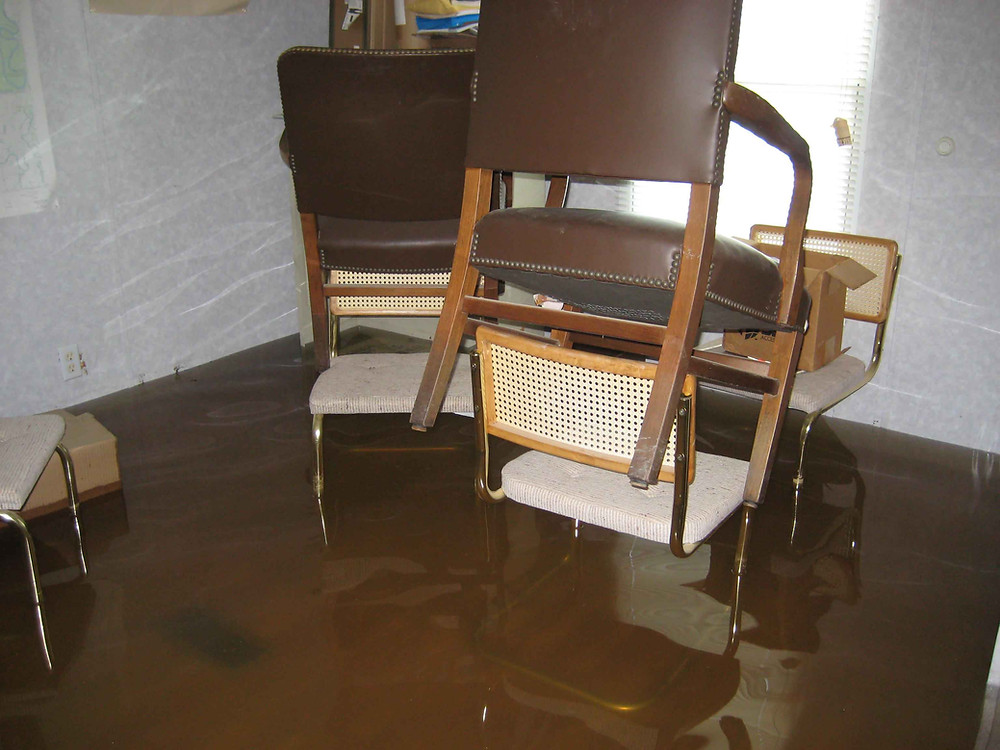 water back up insurance with CH Insurance