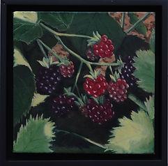 sosummerberries.jpg
