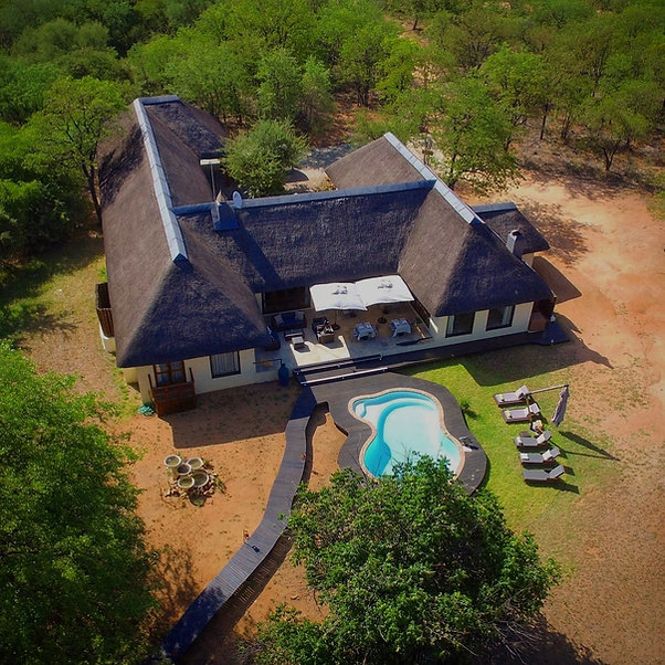 Matimba Bush Lodge privately situated in pristine wilderness area next to Kruger National Park,Limpopo Province, South Africa. Luxury accommodation on Hans Merensky Golf Estate with private safaris in Kruger. Best place to stay for authentic bush experience.