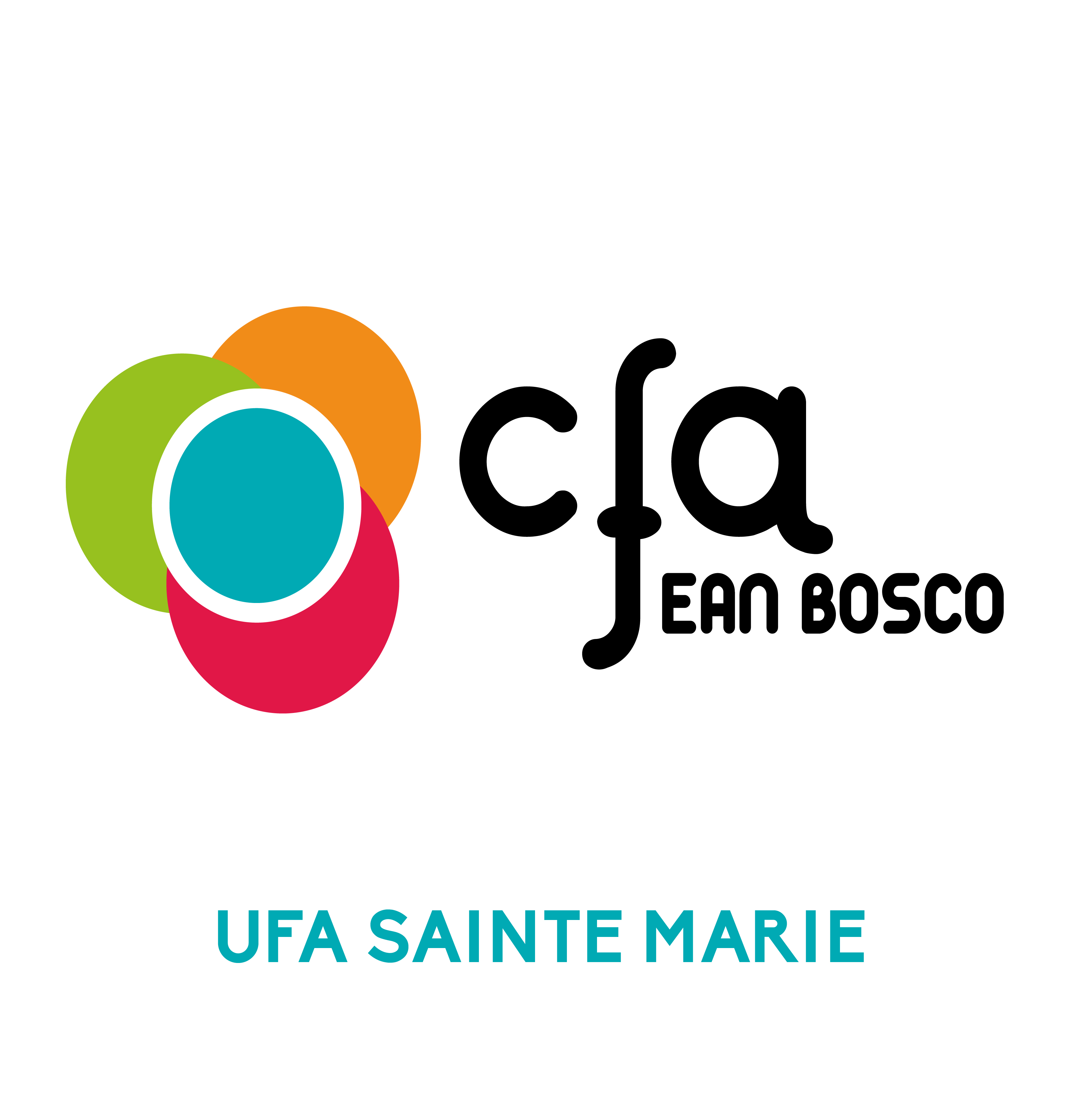 LOGO CFA-SAINTE-MARIE