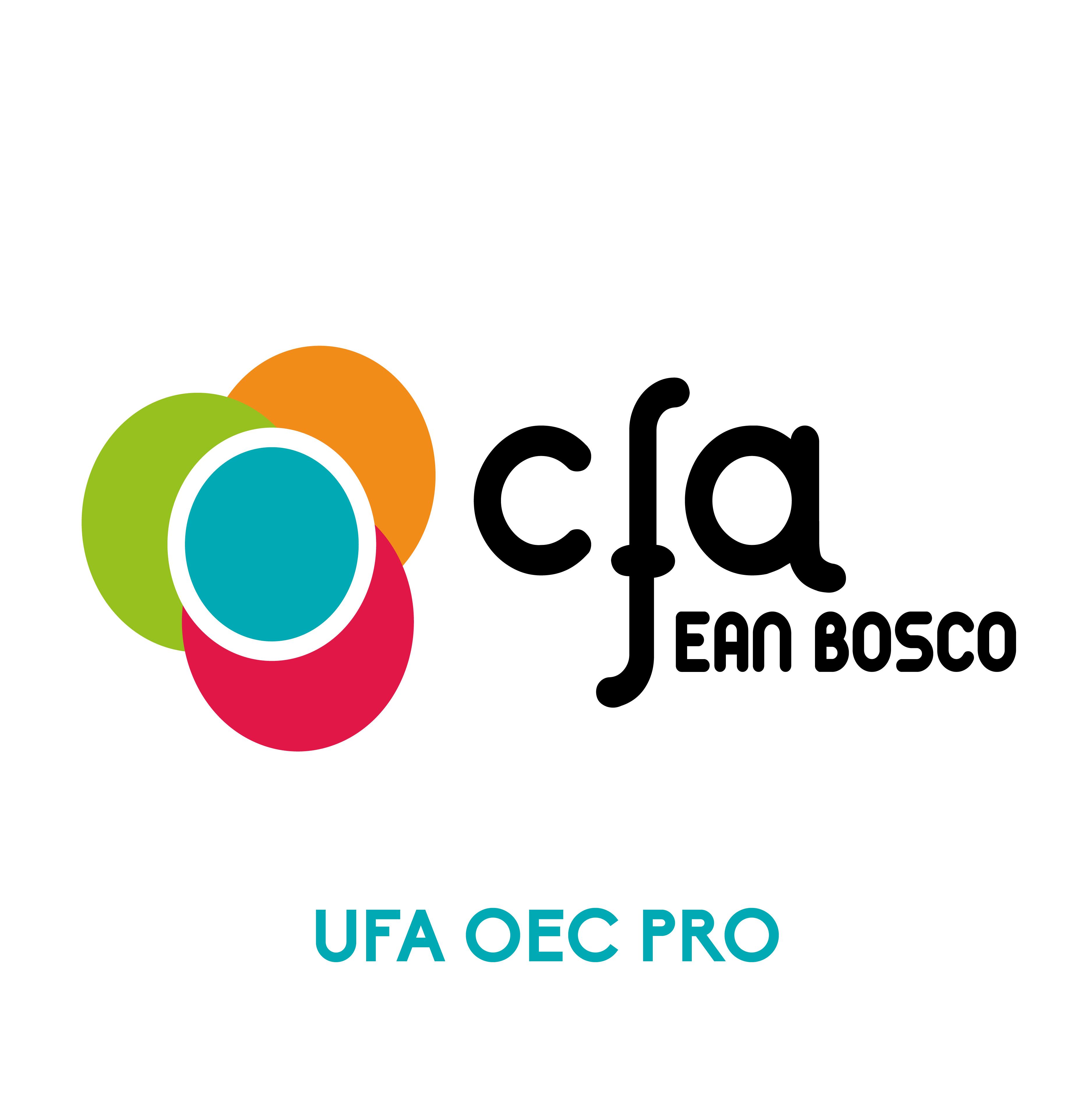 LOGO CFA-OEC-PRO