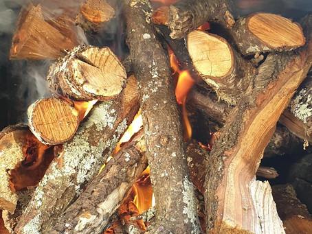 Wood, wood, glorious wood