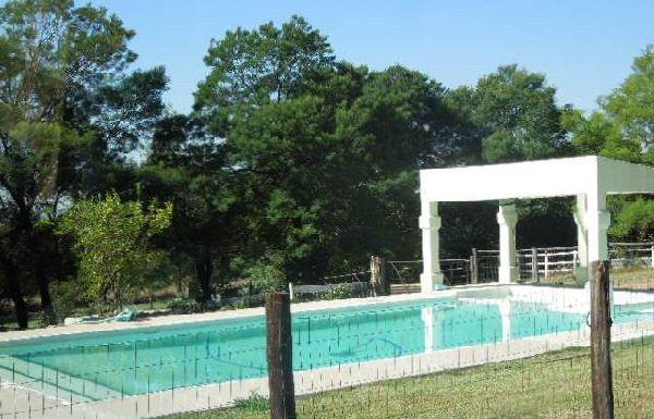 pool-5-20140618-1265353480-600x385-42.jp
