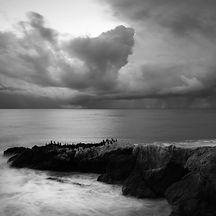Landscapes-3.jpg