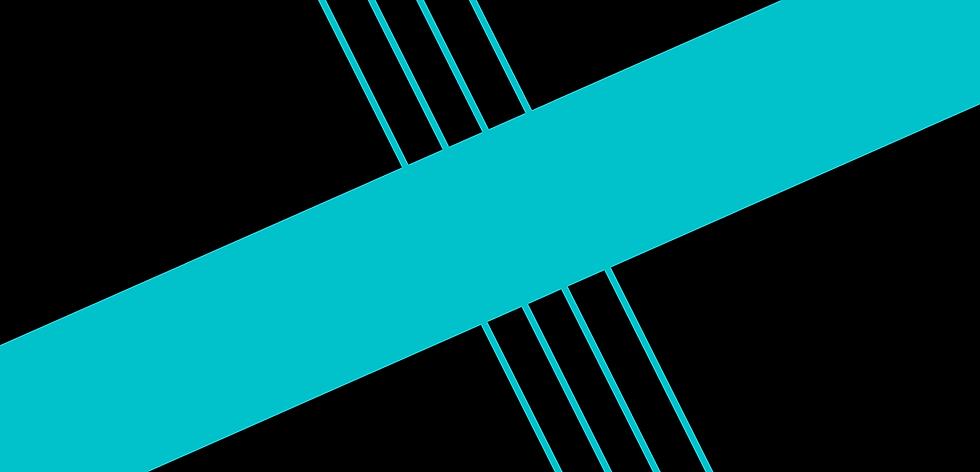 website banner (4).png