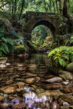 Puente Alen.jpg