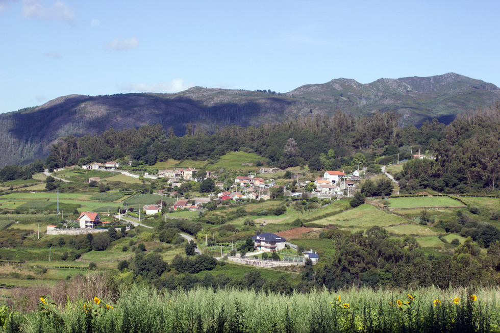 O_Piñeiro_de_Areas,_Covelo (1).jpg