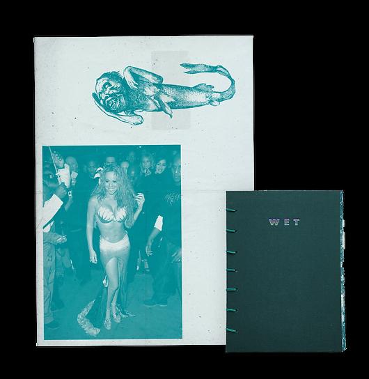 wet website.png