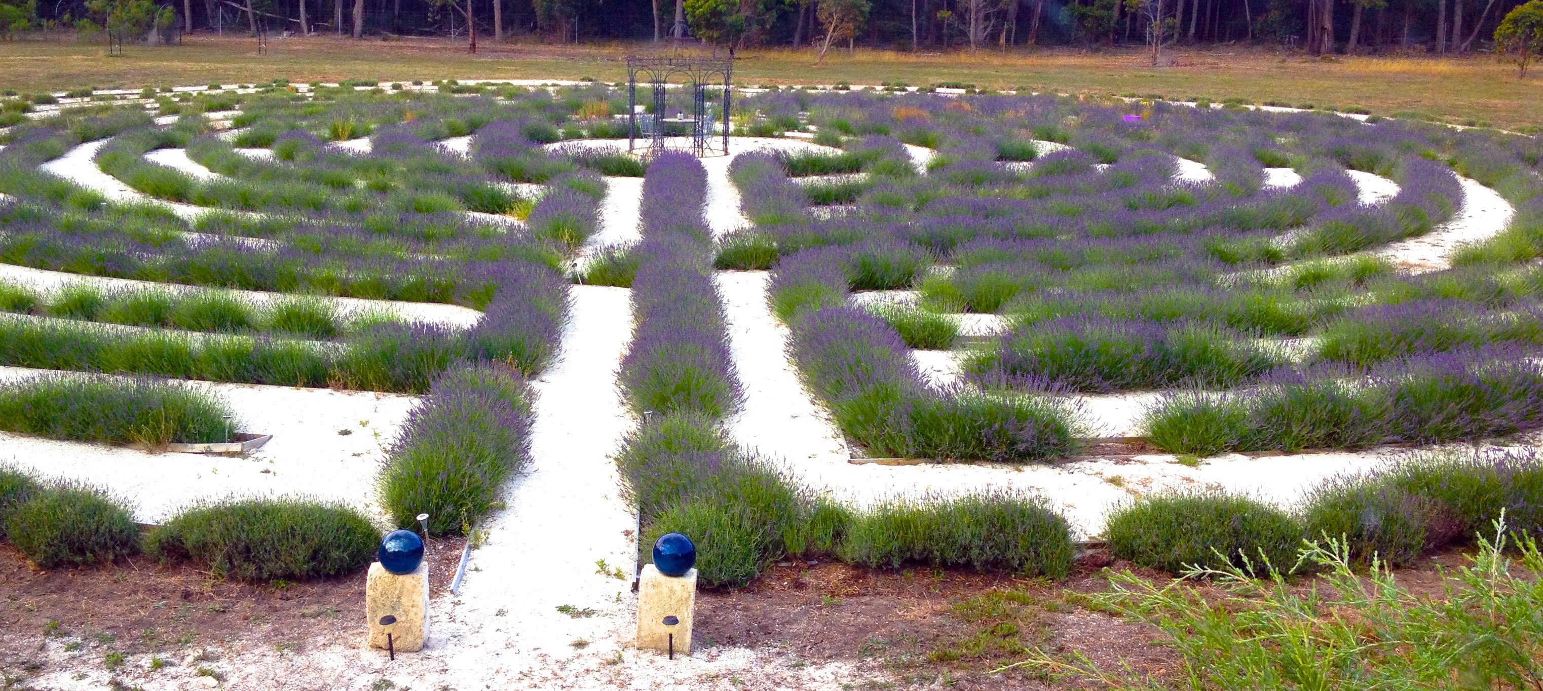 Organic Garden Trail MR 040