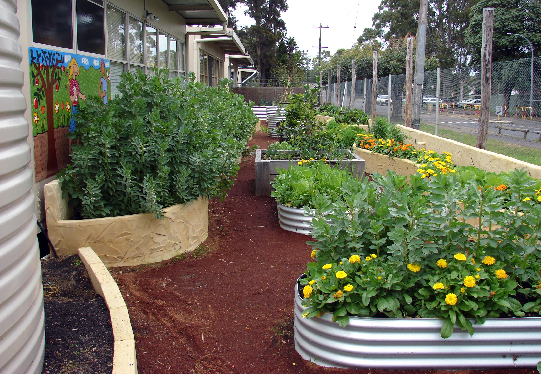 Organic garden Trail MR 005