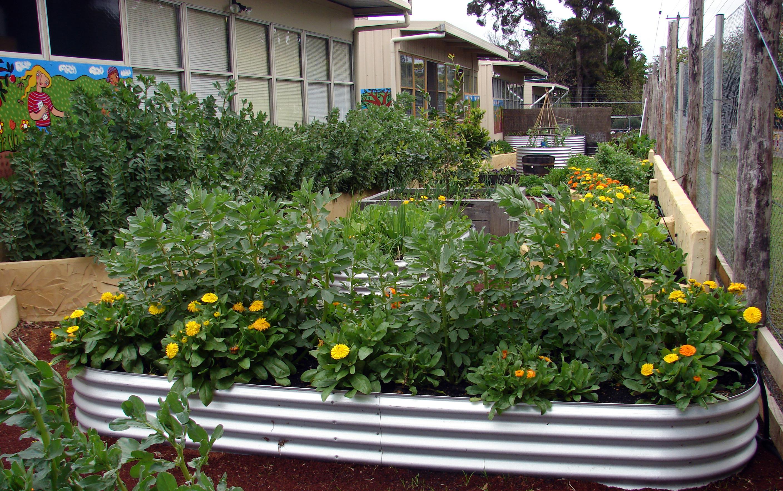 Organic Garden Trail MR 006