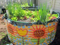 Organic Garden Trail MR 066