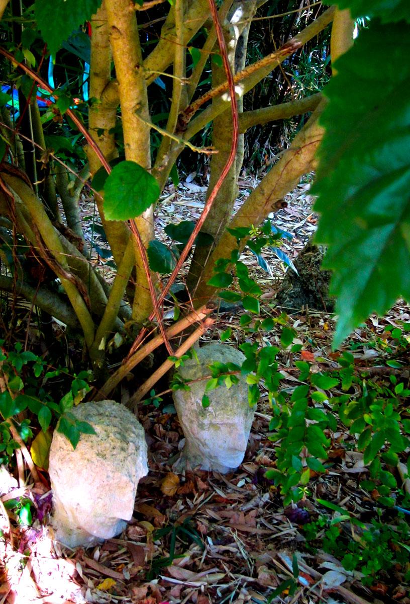Organic Garden Trail MR 030