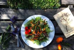 Organic Garden Trail MR 082