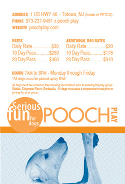 POOCH - Rate Card