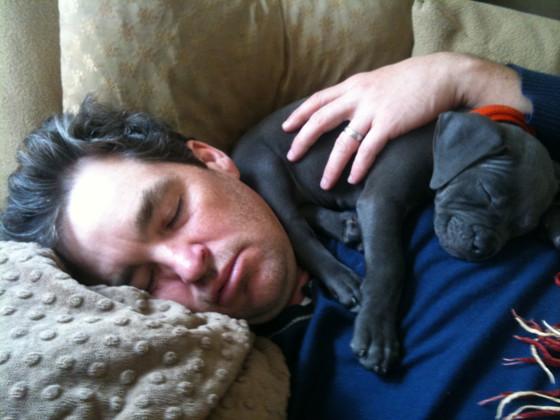 #TuesdayTips: Got Sleep?