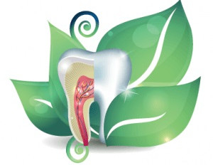 What is Biological Dentistry?