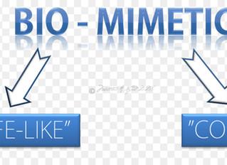 Principles of Biomimetic Dentistry
