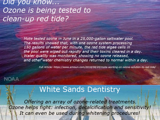 Red Tide Trouble