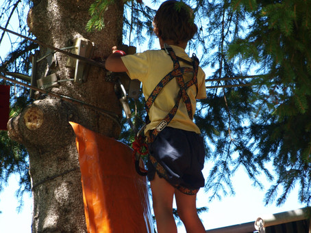 CIME PARC : le parcours aventure de St François renait