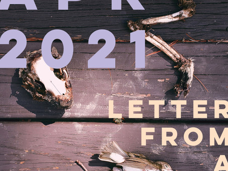 LETTER FROM A FRIEND : APR 2021