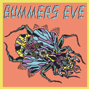 """Bummers Eve - Fly On The Wall 7"""""""