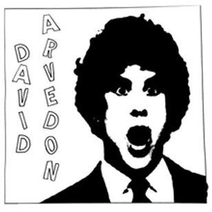 David Arvedon - Best of David Arvedon Vol. 2 LP