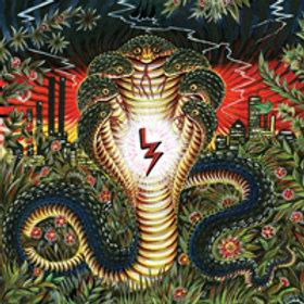 Liquor Store - In The Garden LP / CD