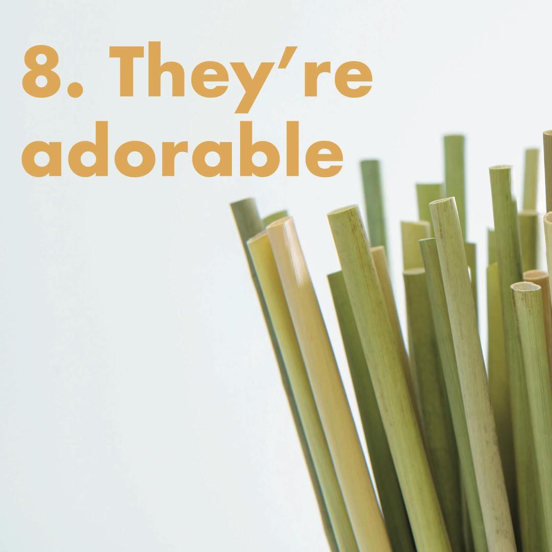 Why grass straws?