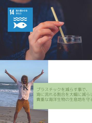 14. 海の豊さを守ろう