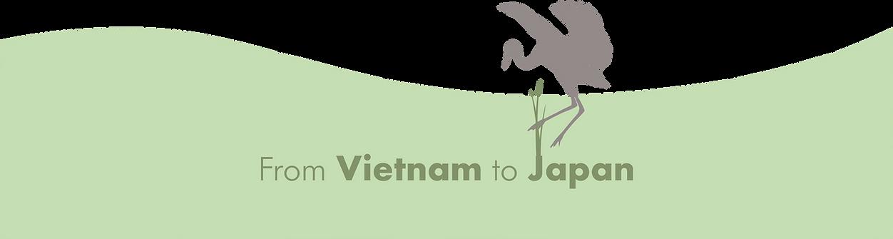 Strawlific Derek Vietnam to Japan png sm