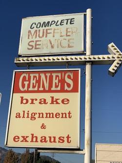 genes brake