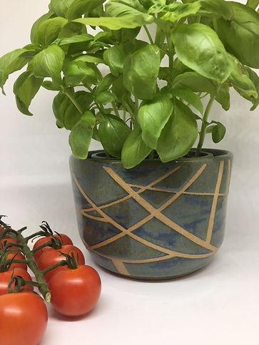 Green planter.JPG