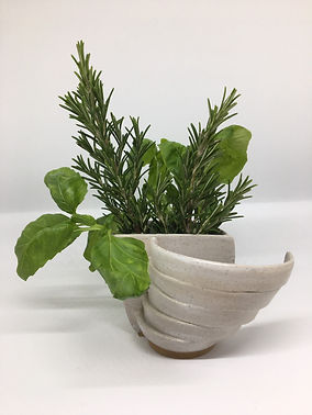 Half vessel with rings offset and herbs.