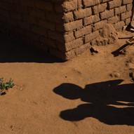 AOM_2016_08_06-08_Madagascar_439bC.jpg