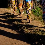 AOM_2016_09_20_Madagascar_315bC.jpg