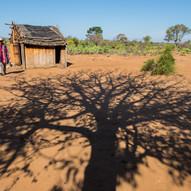 AOM_2016_08_06-08_Madagascar_495bC.jpg