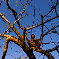 AOM_2016_09_19_Madagascar_465bC.jpg