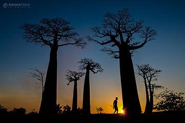AOM_2016_08_29-30_Madagascar_160bC.jpg