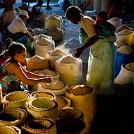 AOM_2016_09_20_Madagascar_443bC.jpg