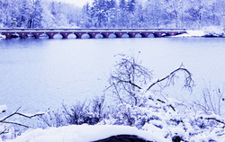 Bridge in the Winter