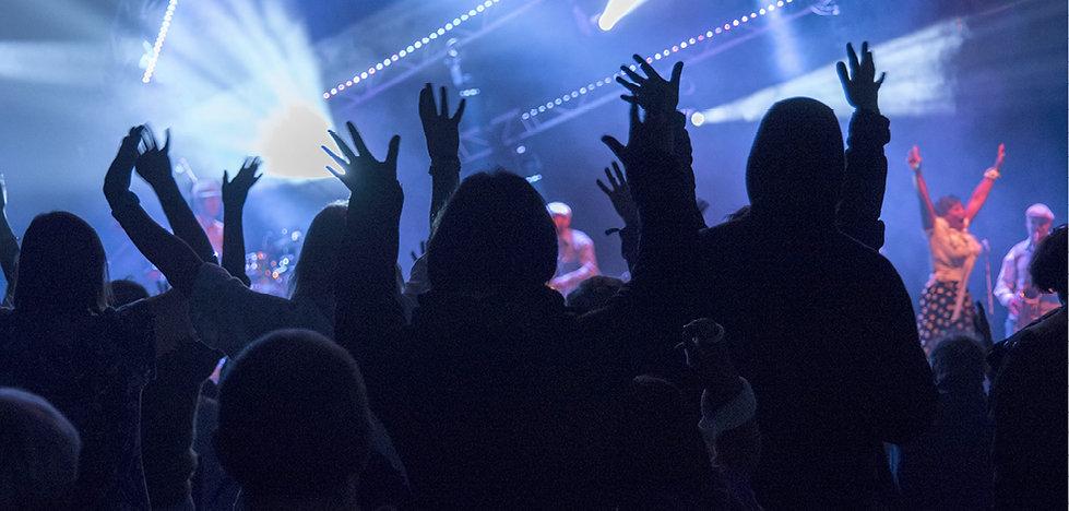Festival audience live event