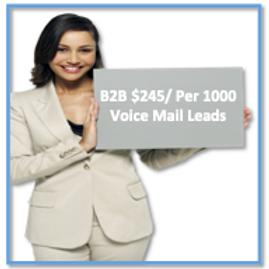 B2B Voice Mail Leads /Per 1000