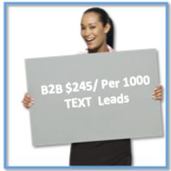 B2B Text Message Leads / Per 1000
