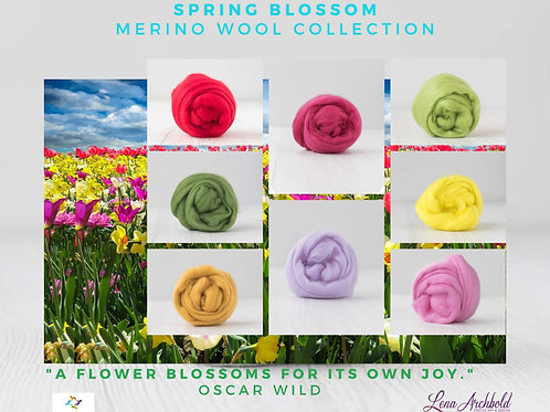 Mix of Merino Wool - Spring Blossom, 200 grams