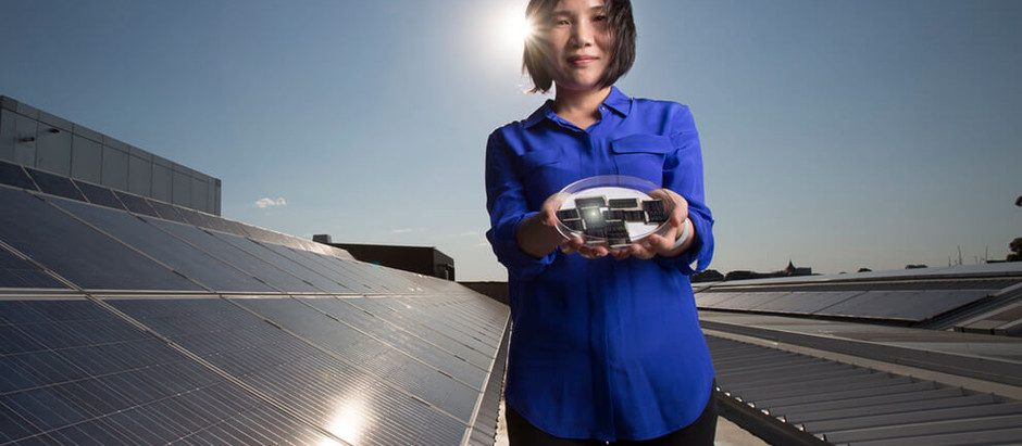 UNSW solar pioneer named Physical Scientist of the Year